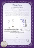 product certificate: FW-W-AA-89-E-Amy