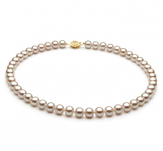 Bianco 7-8mm Qualità AAA - Collana di Perle di Acqua Dolce - Oro Riempito